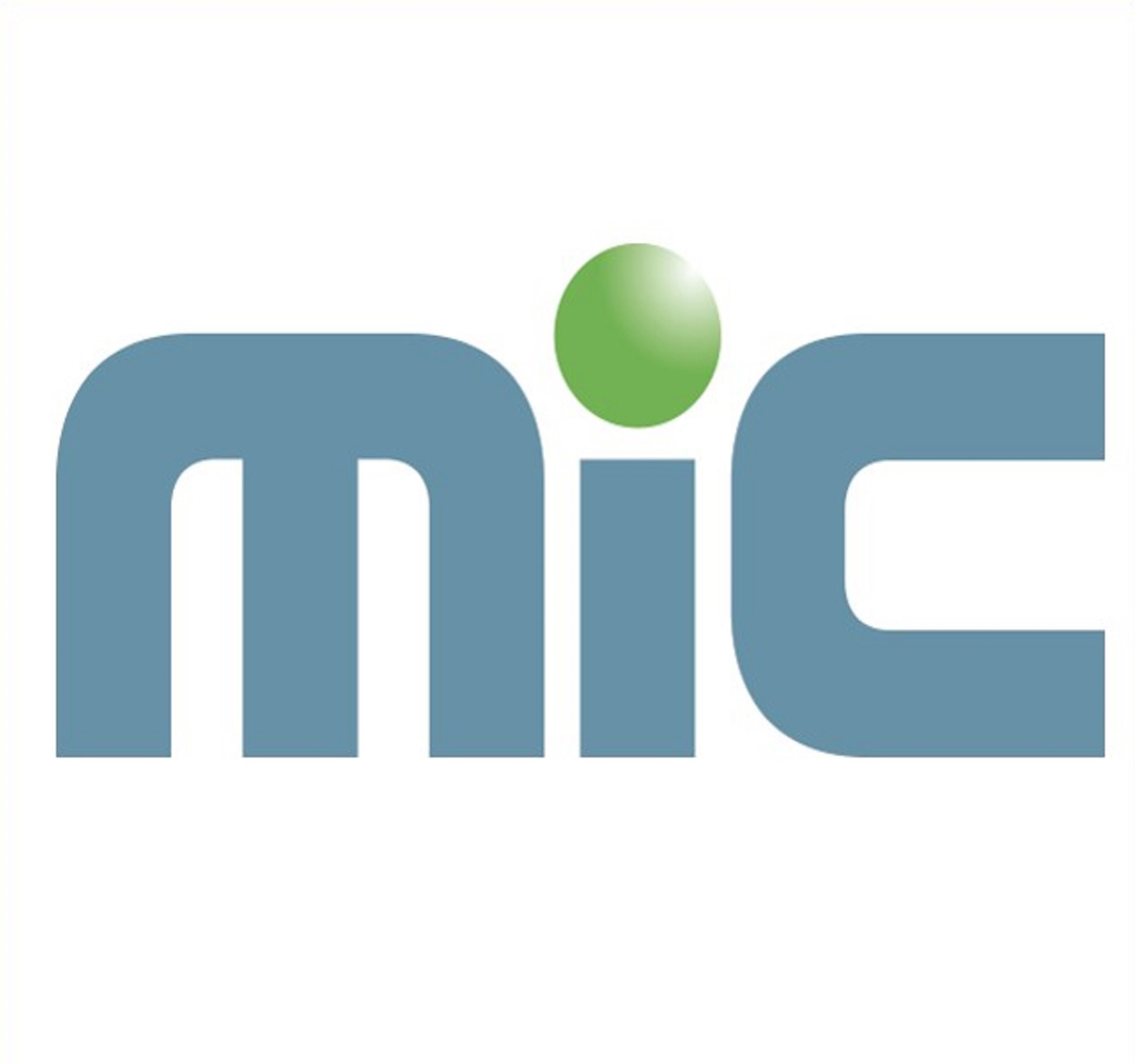 MIC Customs Solutions - SILVER